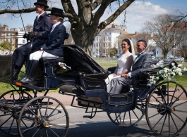 Horse and carriage wedding hire in basingstoke